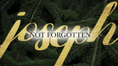 Joseph Not Forgotten Image