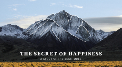 The Secret Of Happiness Image